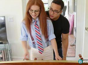 Похотливый студент трахнул рыжую в попу на диване после занятий