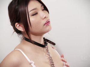 Японка в ошейнике умел вылизывает пенис хозяину