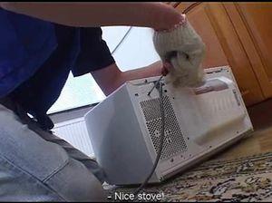 Электрик трахает клиентку на кухне