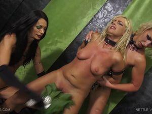 Доминирующие сучки изгаляются над низкорослой блондой мазохисткой