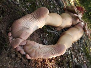 Две телки ходят голые в лесу и босыми ногами наступают на муравейник