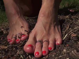 Жестко: гуляя по лесу, села бритой мандой на муравейник