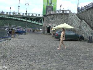 Питерская шлюшка прогулялась без одежды по набережной Невы