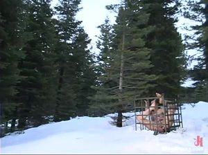 Лесбиянки практикуют БДСМ в зимнем лесу