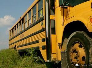 В автобусе симпатичная медсестра согласилась на двойное проникновение